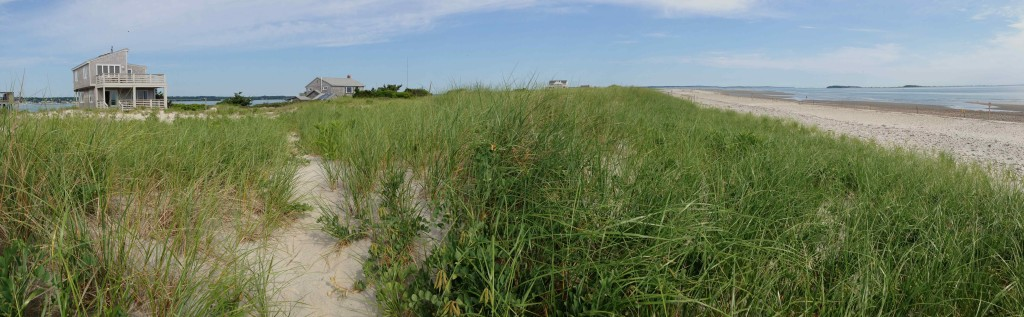 A panorama of Long Beach with Goldenrod's field station to the left. Photo by Shiloh Schulte