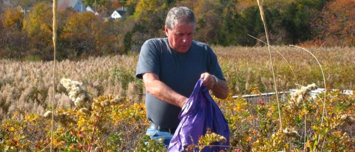 Roll up your Sleeves for Plymouth's 11th Hometown Cleanup