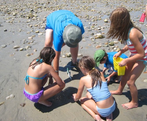 A Beach Ambassador leading nature discovery games for kids.