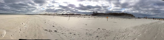 A panorama of the northern tip of Long Beach. Photo credit: Deb Harrison
