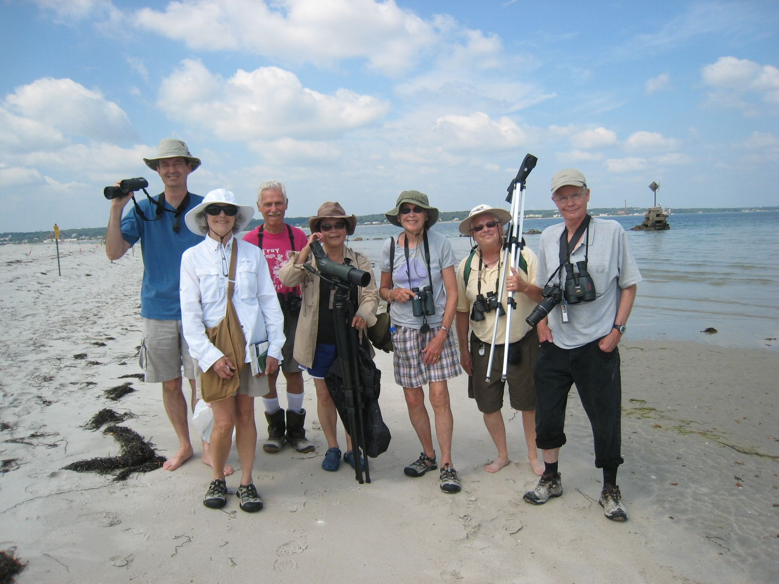 Birding on the beach with the Bird Brains