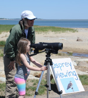 Looking through the spotting scope at the osprey
